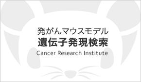 発がんマウスモデル遺伝子発現検索
